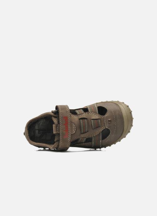 Sneakers Timberland Castleton Fisherman Grijs links