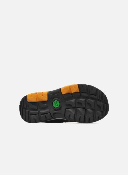 Sneakers Timberland ZIP TRAIL FSHRMN Blauw boven