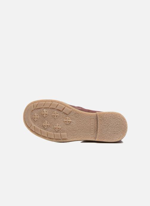 Bottines et boots Pom d Api Trip boots stripes velours Bordeaux vue haut