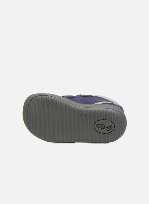 Velcro shoes Aster PIELL Blue view from above