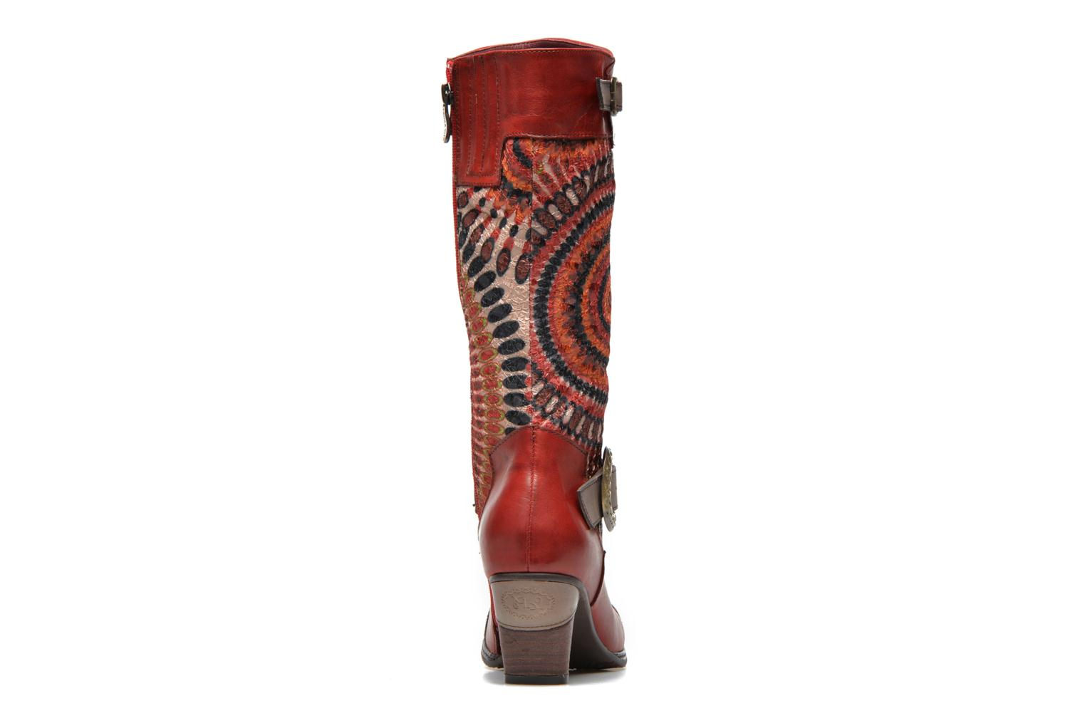 Ankle boots Laura Vita Talle Multicolor view from the right