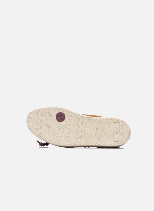Chaussures à lacets Dolfie Mahoe W Marron vue haut