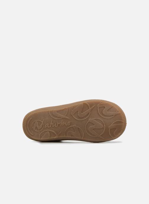 Chaussures à lacets Naturino Cocoon Marron vue haut