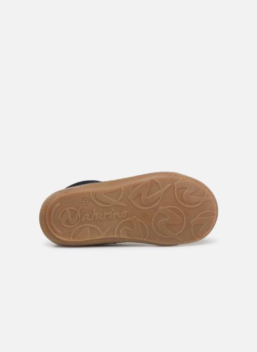 Chaussures à lacets Naturino Cocoon Bleu vue haut