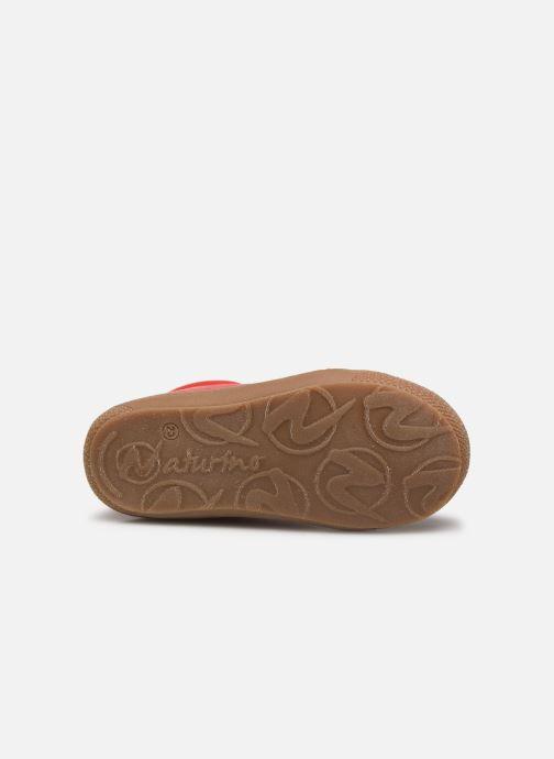 Zapatos con cordones Naturino Cocoon Rojo vista de arriba
