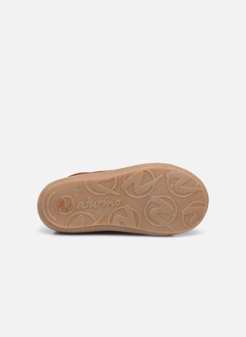 Schnürschuhe Naturino Cocoon rot ansicht von oben