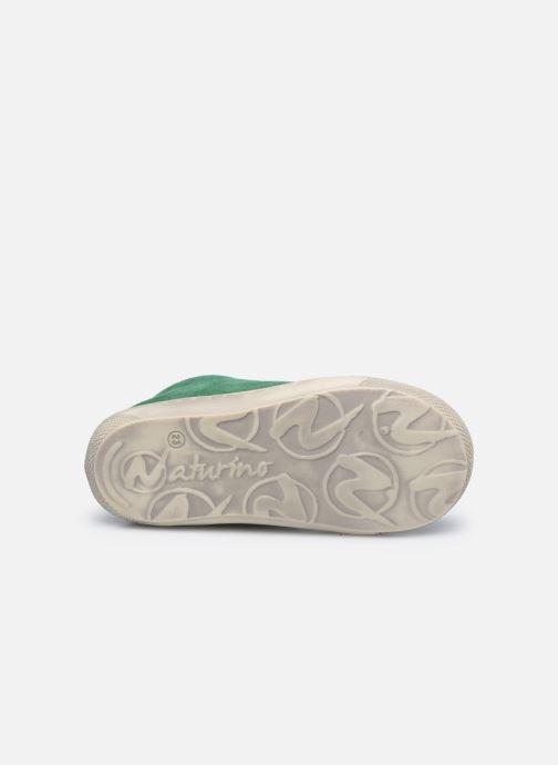 Chaussures à lacets Naturino Cocoon Vert vue haut
