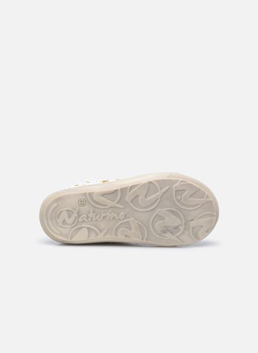 Chaussures à lacets Naturino Cocoon Blanc vue haut