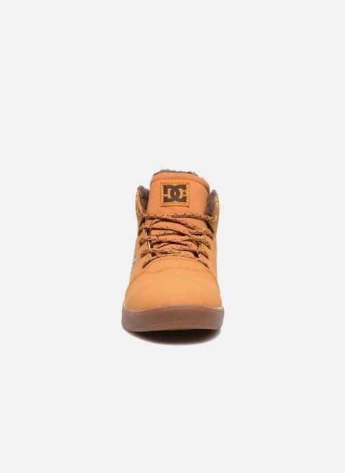 Sneakers DC Shoes CRISIS HIGH WNT Beige modello indossato