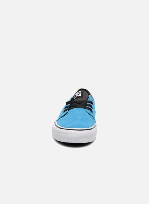 Sneakers DC Shoes TRASE SD Azzurro modello indossato