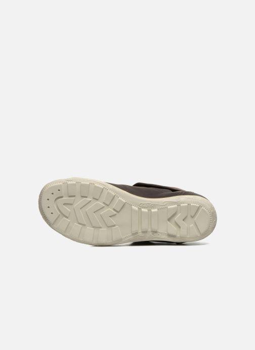 Sneakers P-L-D-M By Palladium Gaetane CLP Zwart boven