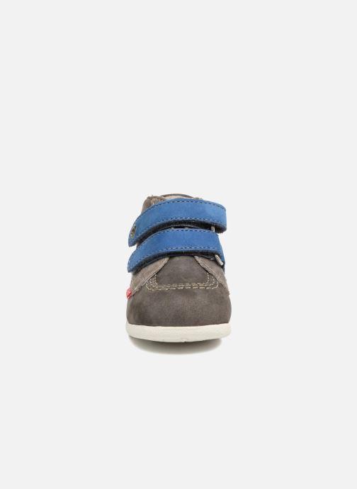Zapatos con velcro Kickers Babyscratch Gris vista del modelo