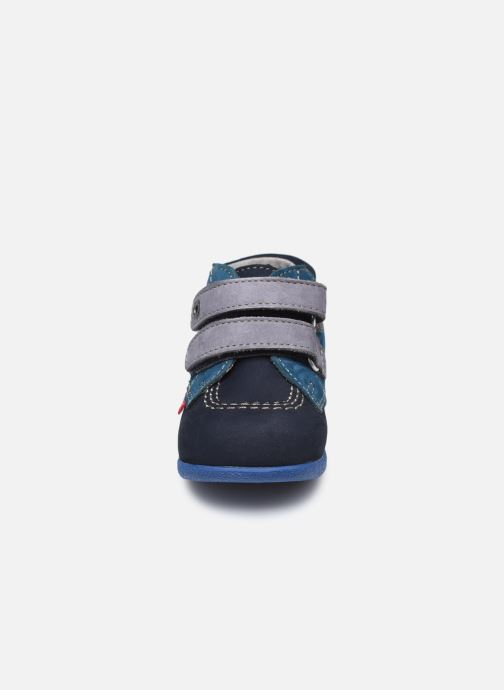 Zapatos con velcro Kickers Babyscratch Azul vista del modelo