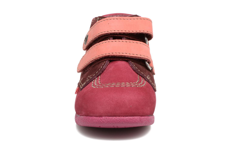Chaussures à scratch Kickers Babyscratch Rose vue portées chaussures