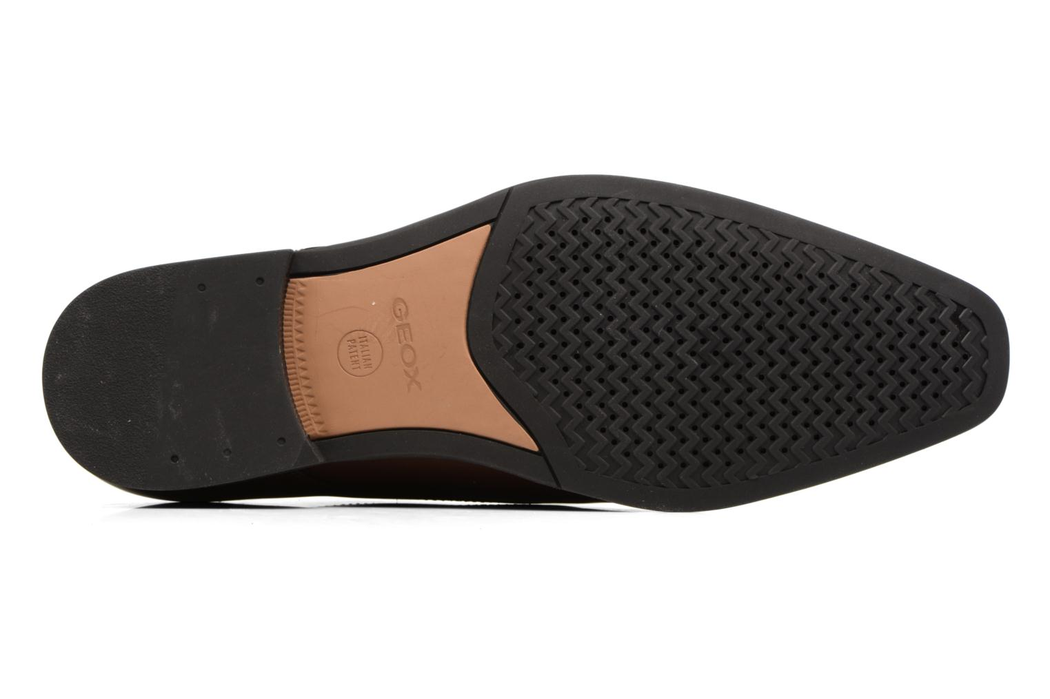 Lace-up shoes Geox U NEW LIFE A U54P4A Brown view from above