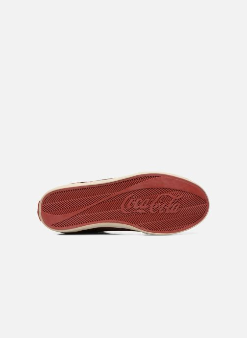 Trainers Coca-cola shoes Montreal Low Burgundy view from above