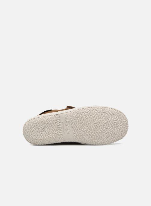 Schoenen met klitteband Victoria Safari Serraje Velcro Bruin boven