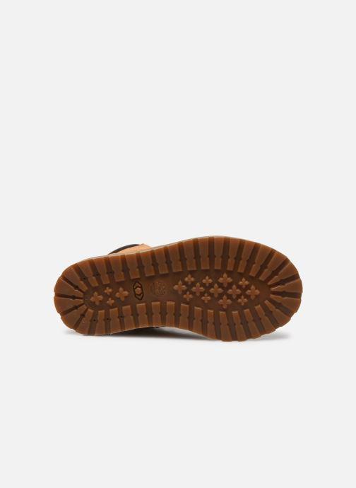 Stivaletti e tronchetti Timberland Pokey Pine 6In Boot with Beige immagine dall'alto