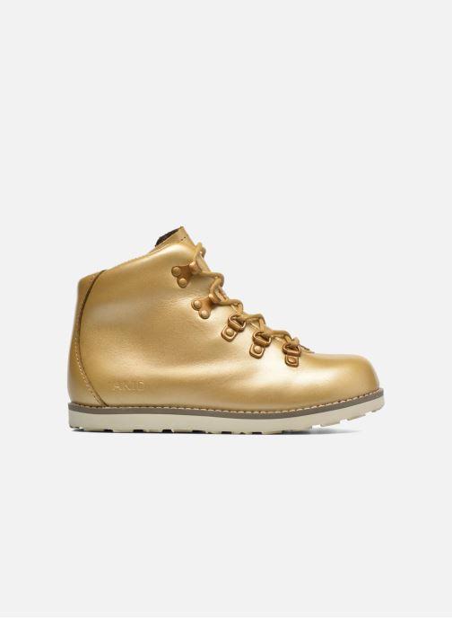 Boots en enkellaarsjes Akid Jasper Goud en brons achterkant