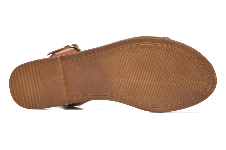 Sandales et nu-pieds Steve Madden Donddi Marron vue haut