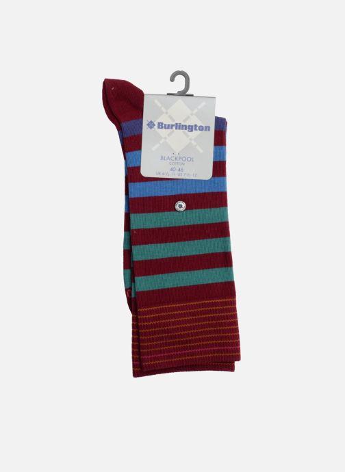 Socken & Strumpfhosen Burlington Socken RAYEES weinrot ansicht von vorne