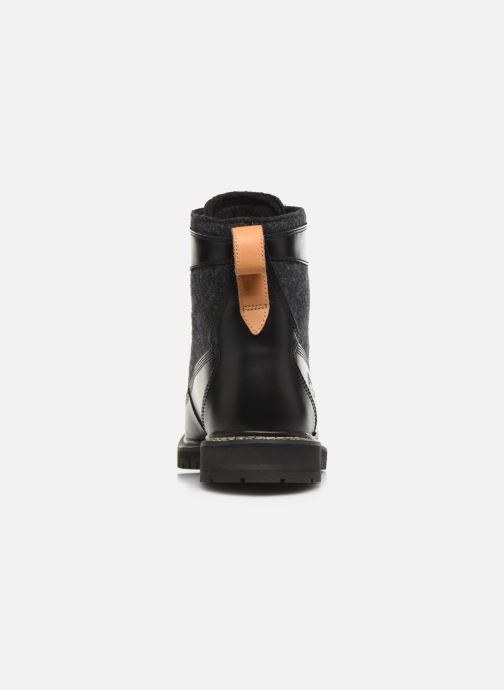 Bottines et boots Timberland Britton Hill 6 in WL L/F Boot NWP Noir vue droite