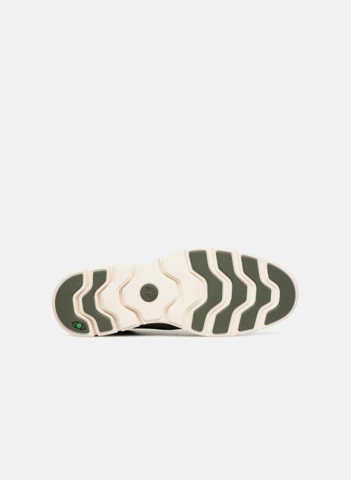 Sneakers Timberland Bradstreet Chukka Leather Groen boven