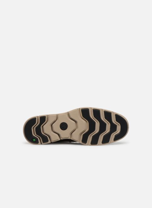 Sneakers Timberland Bradstreet Chukka Leather Marrone immagine dall'alto