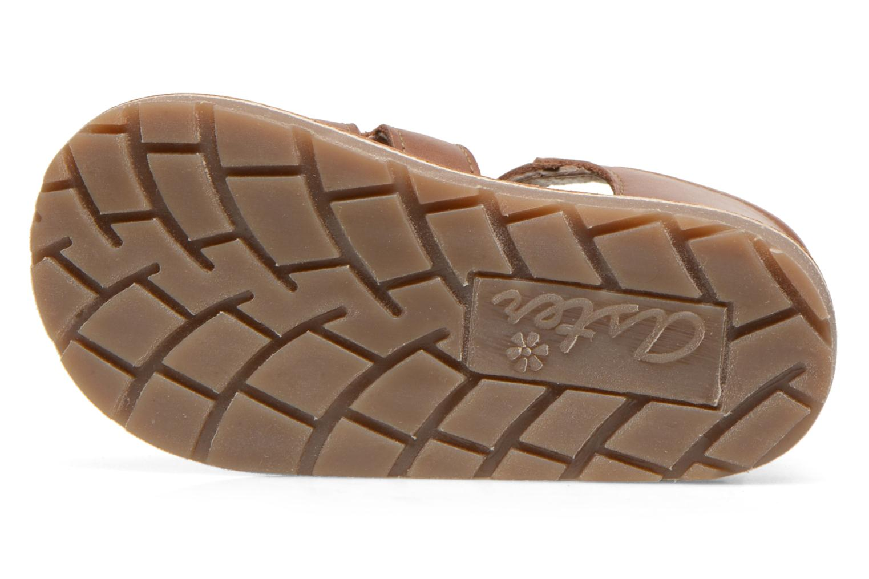 Sandales et nu-pieds Aster Ely Marron vue haut