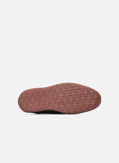 Zapatos con cordones Base London Gig Perform Azul vista de arriba