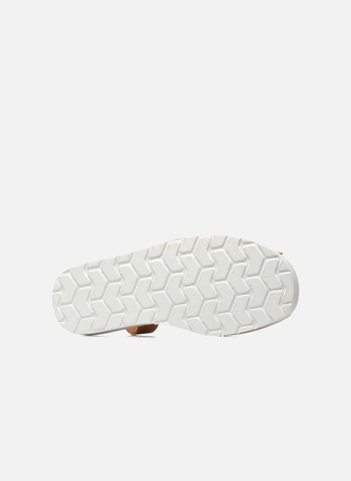 Sandali e scarpe aperte MINORQUINES Creepers Marrone immagine dall'alto