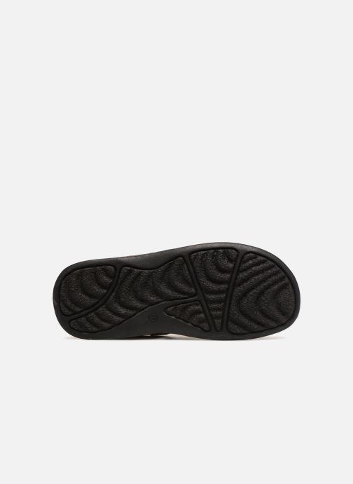Sandales et nu-pieds Roadsign Garibou Marron vue haut