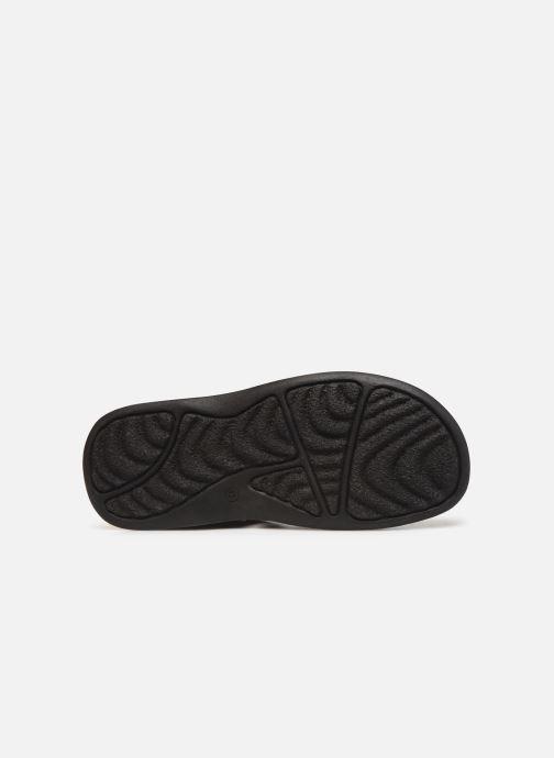 Sandales et nu-pieds Roadsign Garibou Noir vue haut