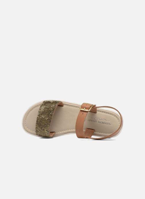Sandales et nu-pieds Elizabeth Stuart Palais 875 Marron vue gauche