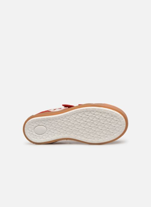 Sneakers Bisgaard Joes Rosso immagine dall'alto