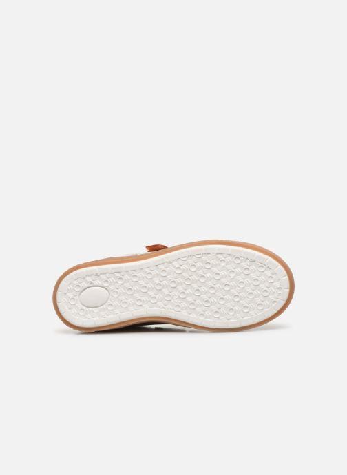 Baskets Bisgaard Joes Orange vue haut