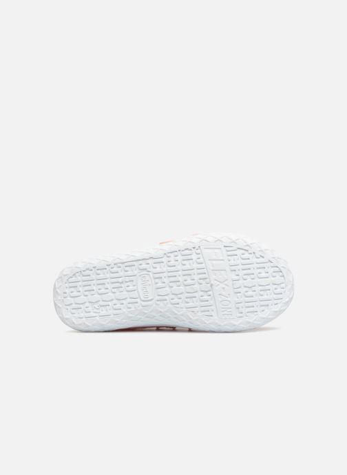 Sneakers Chicco Cambridge Rosa immagine dall'alto