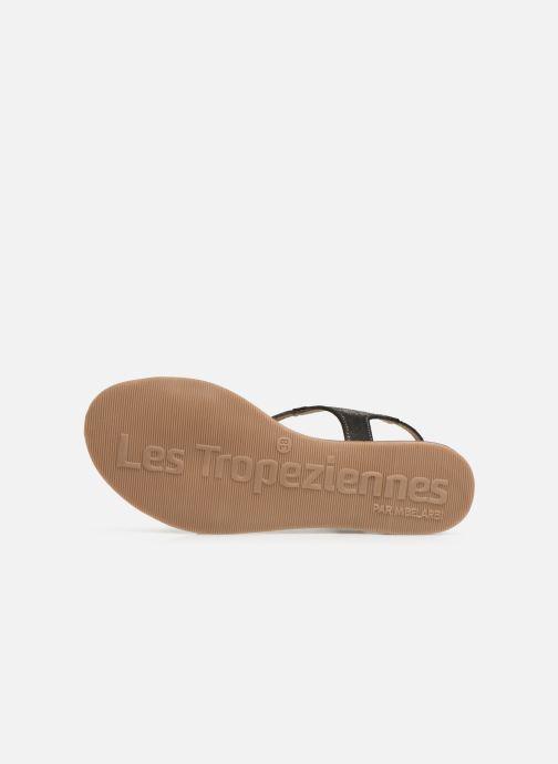 Sandales et nu-pieds Les Tropéziennes par M Belarbi Horse Noir vue haut