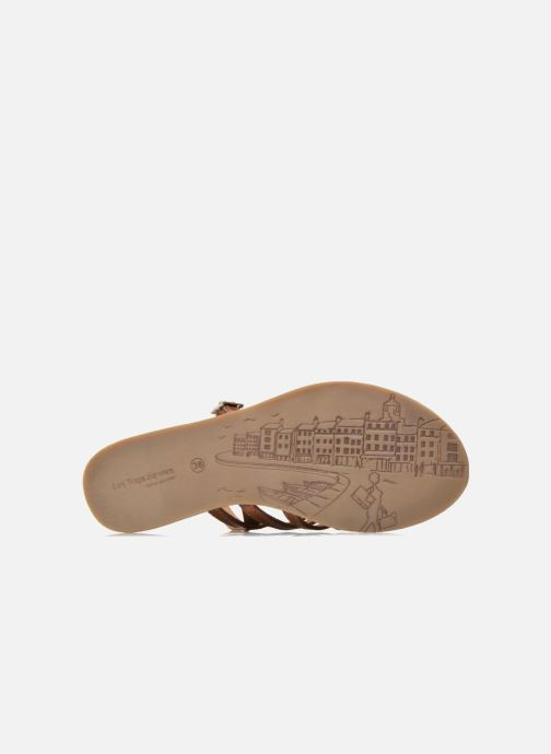 Sandali e scarpe aperte Les Tropéziennes par M Belarbi Havapo Marrone immagine dall'alto