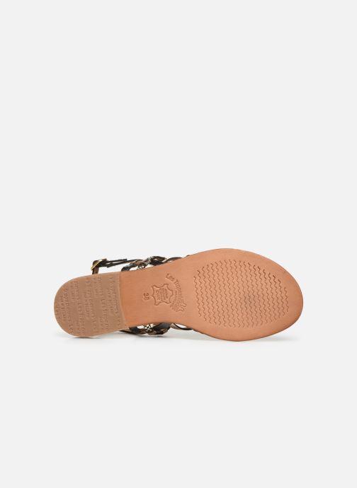 Sandales et nu-pieds Les Tropéziennes par M Belarbi Cumin Noir vue haut