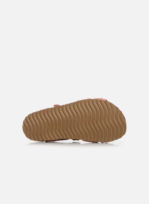Sandalen Shoesme Bio Sandaal rosa ansicht von oben