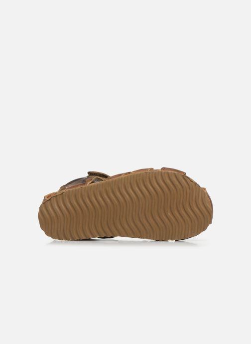 Sandali e scarpe aperte Shoesme Bio Sandaal Marrone immagine dall'alto