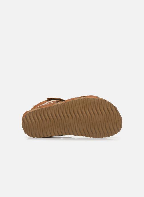 Sandales et nu-pieds Shoesme Bio Sandaal Marron vue haut