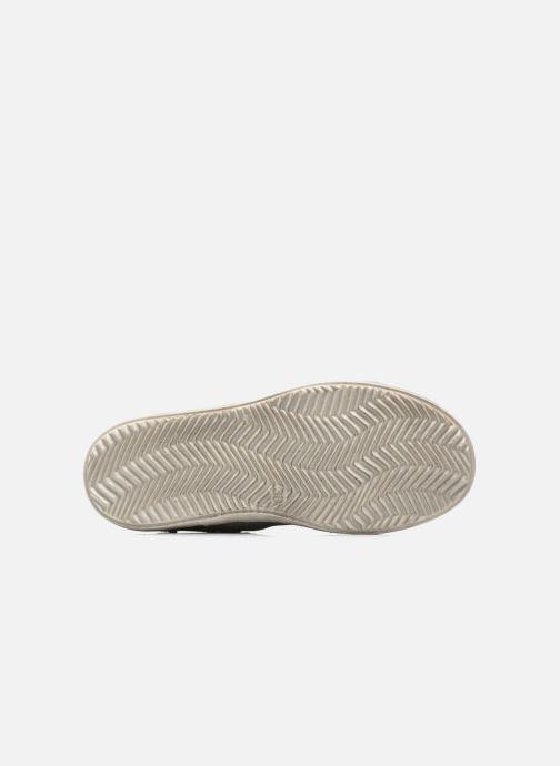 Chaussures à lacets Primigi Mariana Gris vue haut