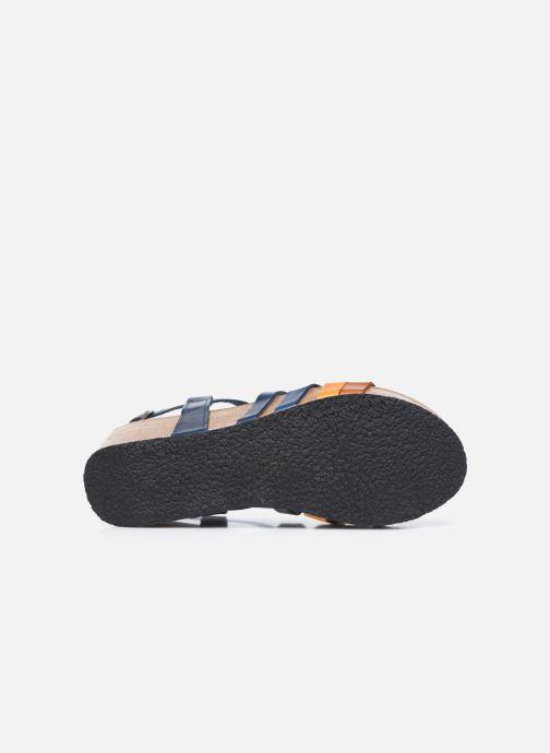 Sandales et nu-pieds Plakton So song Marron vue haut