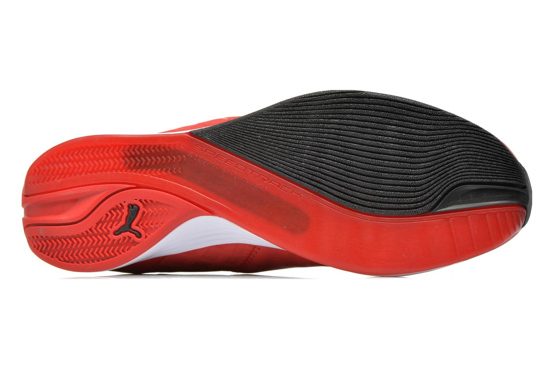 Sneakers Puma Evospeed 1 4 SF Nm Rood boven