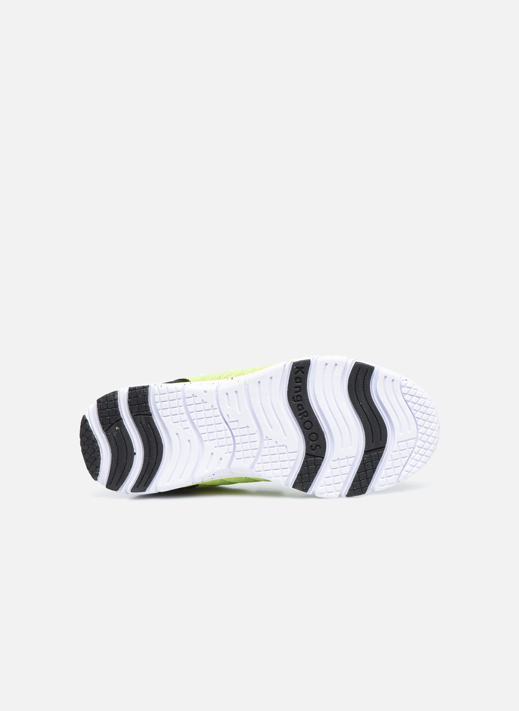 Baskets Kangaroos Nuri-Zebra Noir vue haut