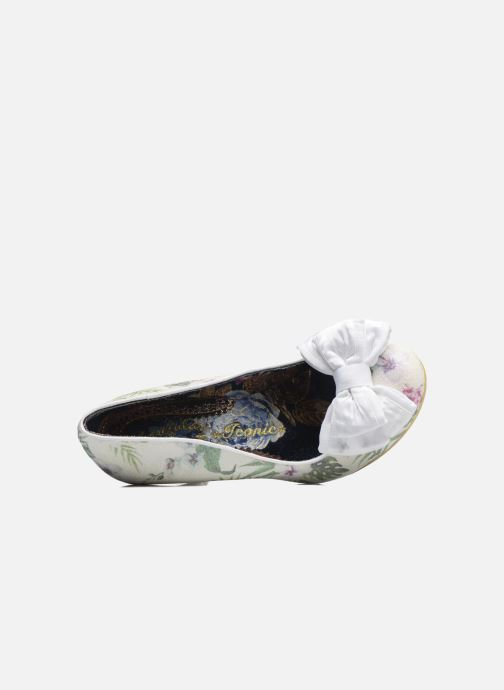 White Floral Irregular Choice Ban Joe vwOmNn08