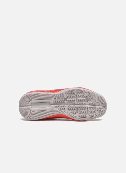Chaussures de sport adidas performance NXT LVL SPD IV NBA K Rouge vue haut