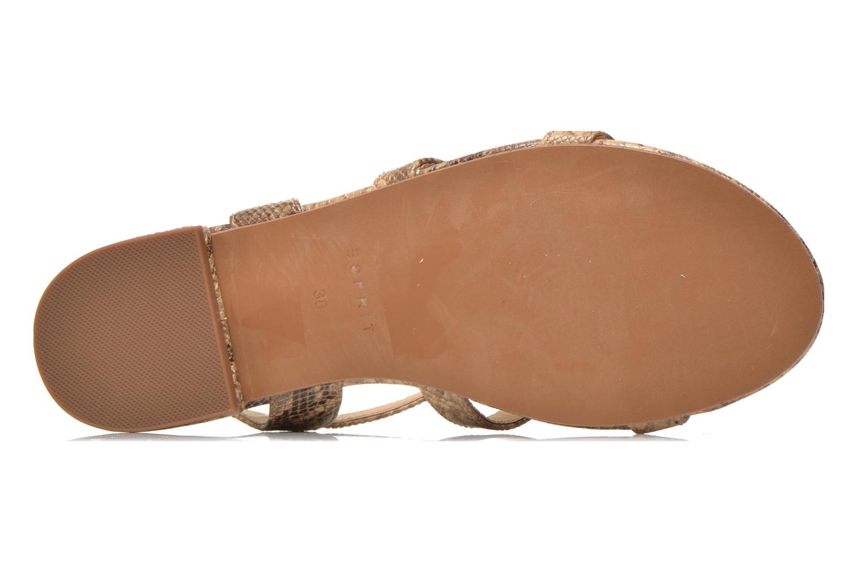 Sandali e scarpe aperte Esprit Aely Sandal Beige immagine dall'alto